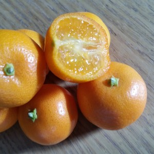 Eco-citric-calamondin-naranja