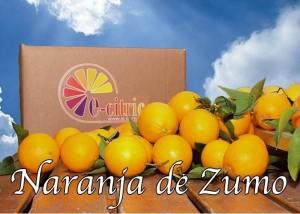 ecocitric-naranjas zumo
